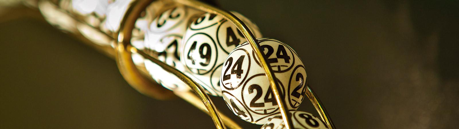 254 betting site